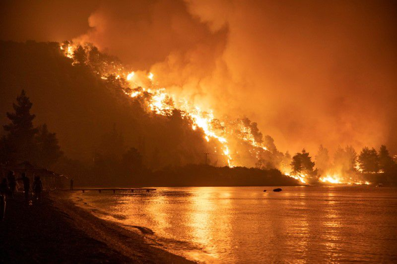 The fire started in the forests of the city of Patras.  Gradually it reached 141 villages and people had to run away from home.