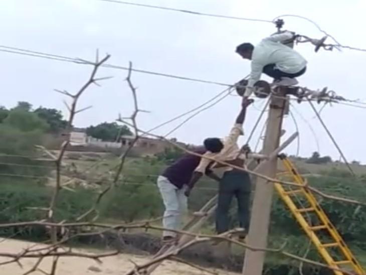 काम के दौरान ठेकेदार ने चालू कर दी लाइन, बिजली के झटके से तारों के बीच फंसा डिस्कॉमकर्मी; फीडर लगे ब्रेकर से बची जान|बाड़मेर,Barmer - Dainik Bhaskar