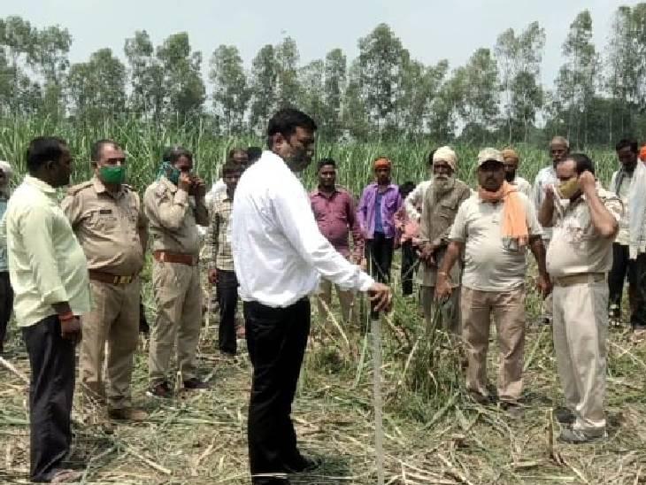 ग्रामीणों की सूचना मिलने के बाद मौके पर पहुंची वन विभाग की टीम अब हाथियों की निगरानी कर रही है। - Dainik Bhaskar