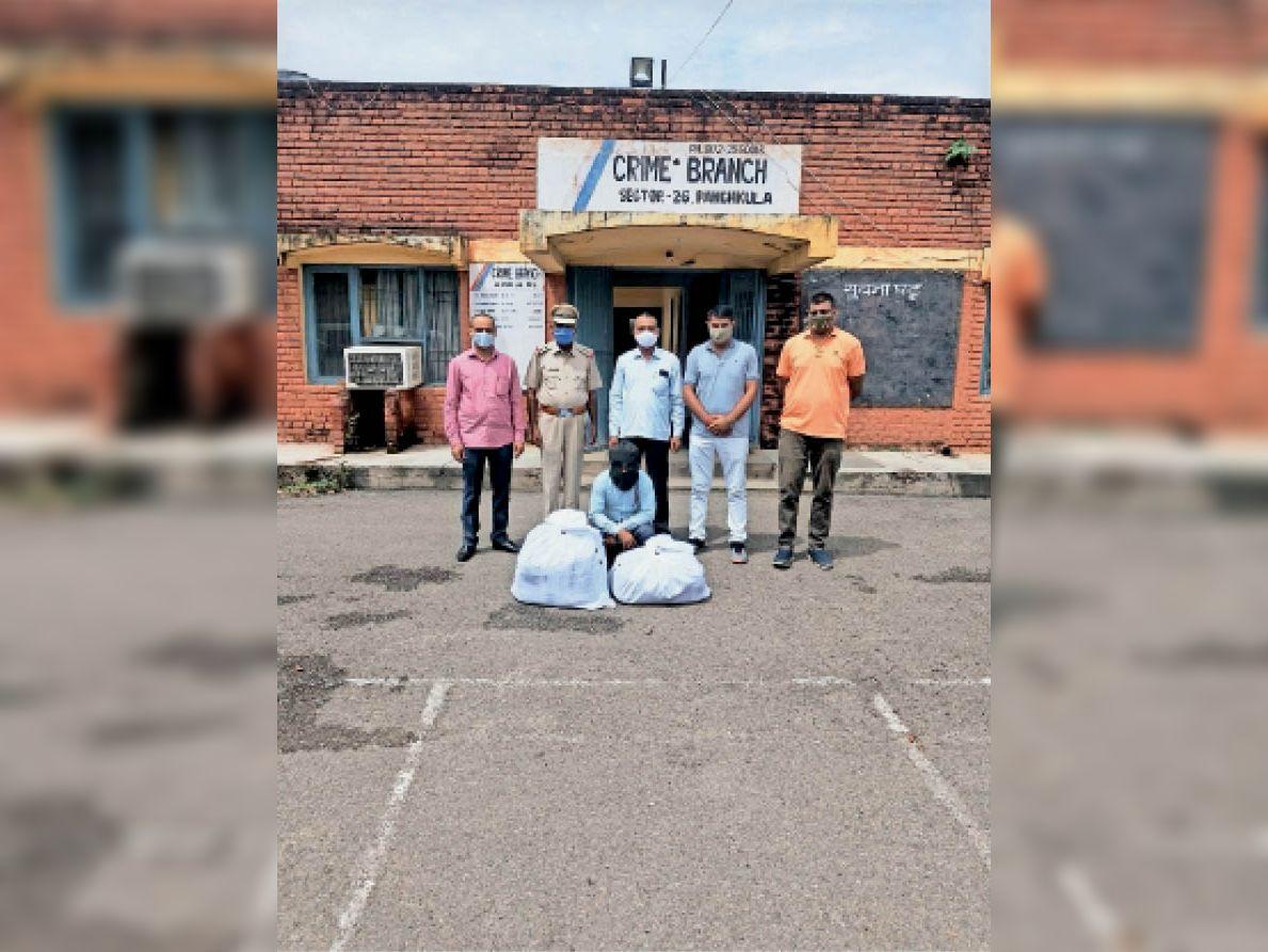 लखनऊ से बेचने के लिए लाया था नशे की 2.25 लाख गोलियां, गिरफ्तार पंचकूला,Panchkula - Dainik Bhaskar
