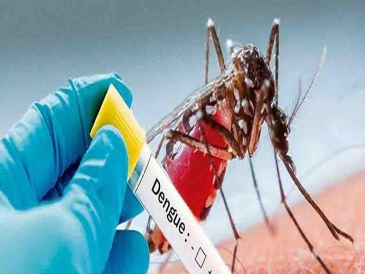 देहात में रहने वाले मरीज ने इलाज के दौरान तोड़ा दम, कानपुर देहात में नहीं है एलाइजा टेस्ट की सुविधा कानपुर,Kanpur - Dainik Bhaskar