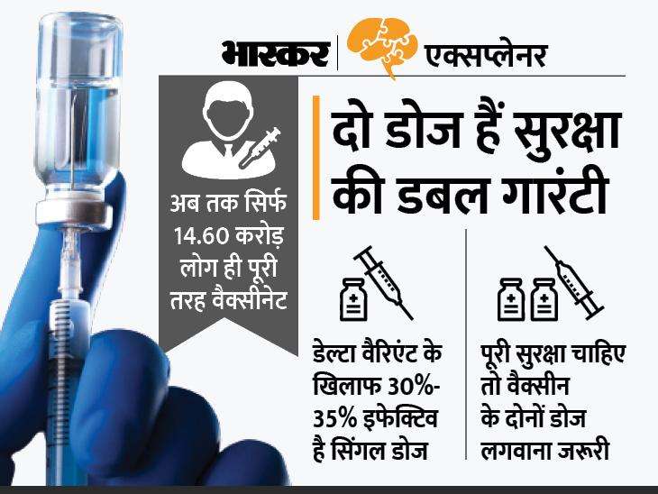 भारत में 1.6 करोड़ लोगों ने मिस किया कोविड-19 वैक्सीन का दूसरा डोज; आपको भी दूसरे डोज में देरी हुई है तो क्या होगा? जानिए सब कुछ|एक्सप्लेनर,Explainer - Dainik Bhaskar