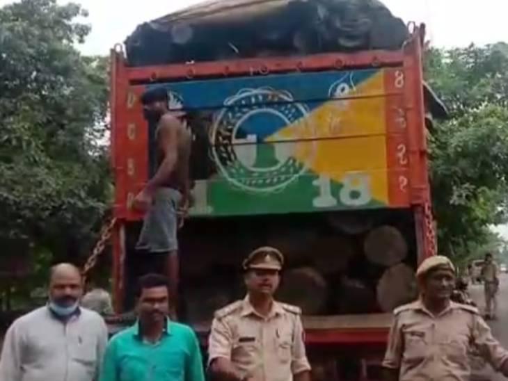 सिद्धार्थनगर-महराजगंज के बॉर्डर से ट्रक के जरिए ले जा रहे थे शीशम, 4 लाख के करीब बताई जा रही कीमत|सिद्धार्थनगर,Siddharthnagar - Dainik Bhaskar
