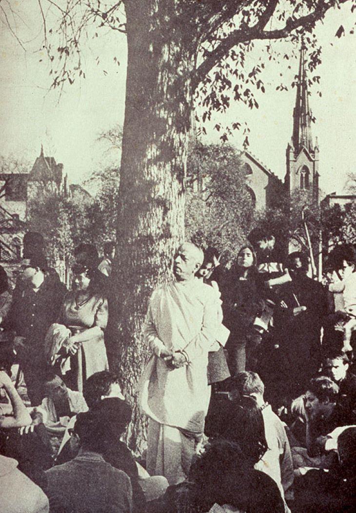 यूएसए के बोस्टन का वो पेड़ जहां श्रील् प्रभुपाद खड़े होकर भगवत गीता पर उपदेश देते थे और कीर्तन करते थे। इस पेड़ का नाम उनकी याद में हरे कृष्णा ट्री रखा गया। आज भी इस्कॉन के भक्त इस पेड़ को देखने जाते हैं।