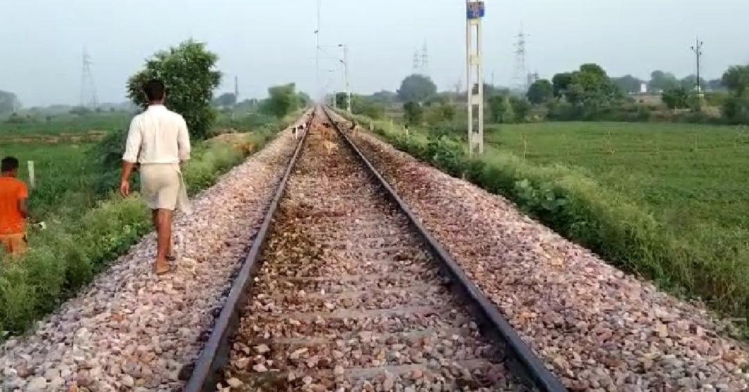 ट्रेन से कटकर एक दर्जन गौवंशो की मौत, पुलिस ने कराया अंतिम संस्कार , ग्रामीणों ने की तारबंदी की मांग आगरा,Agra - Dainik Bhaskar
