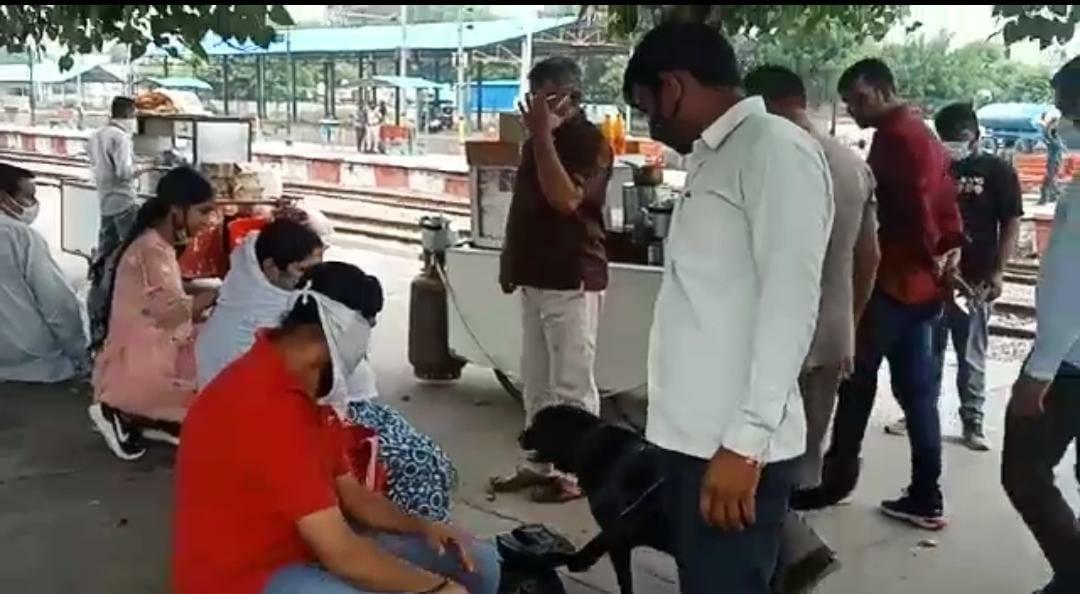 रोहतक रेलवे स्टेशन पर यात्रियों के बैग चेक करती डॉग स्क्वायड टीम।