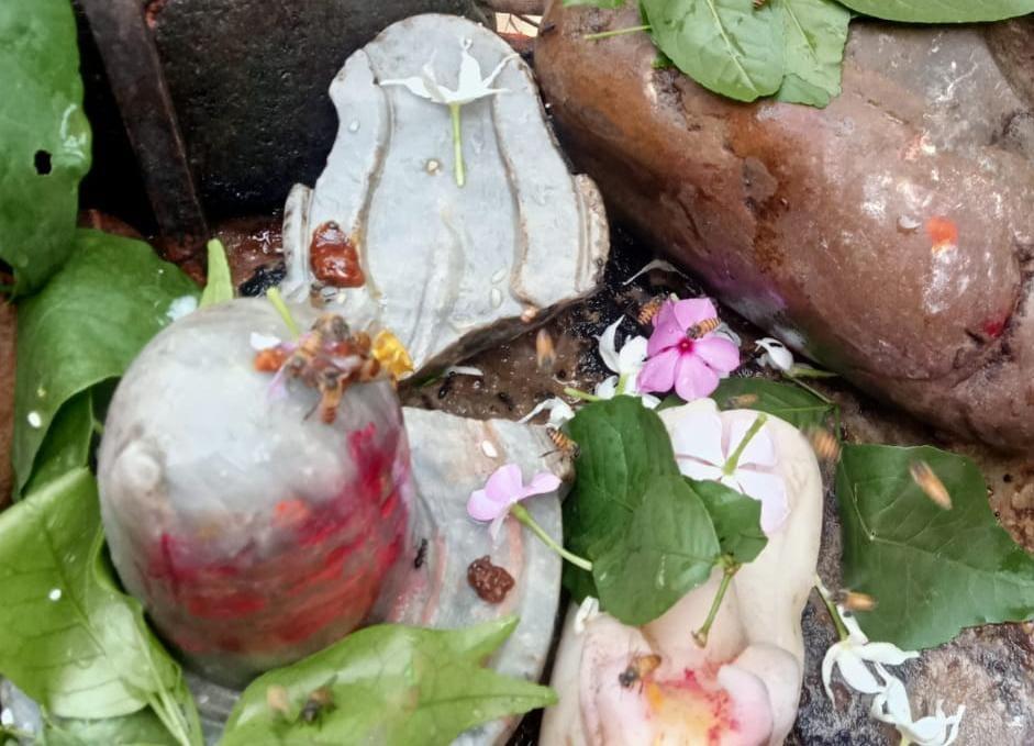 अयोध्या के सहादतगंज के मिर्जापुर में तोड़ा गया शिवलिंग का अरघा