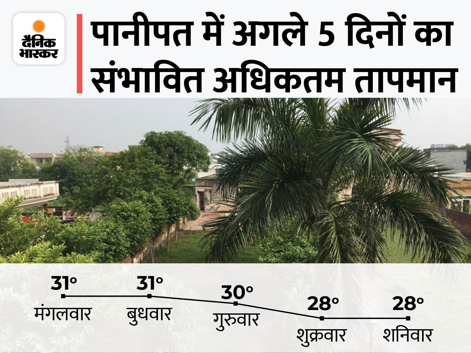धूप खिलने से 1 डिग्री बढ़ा तापमान; 11 सितंबर तक मानसून के सक्रिय रहने के आसार और बना रहेगा ठंडक का अहसास|पानीपत,Panipat - Dainik Bhaskar
