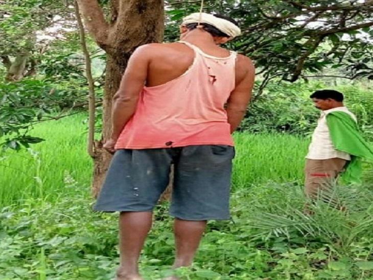 खेत में लगे पेड़ से लटकता मिला शव, सुबह निकला था घर से; सुसाइड का कारण स्पष्ट नहीं, पुलिस बोली- डिप्रेशन में था|बालोद,Balod - Dainik Bhaskar