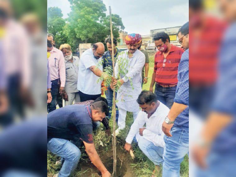 पौधरोपण करते हुए कांग्रेस नेता हेमंत भाटी। - Dainik Bhaskar