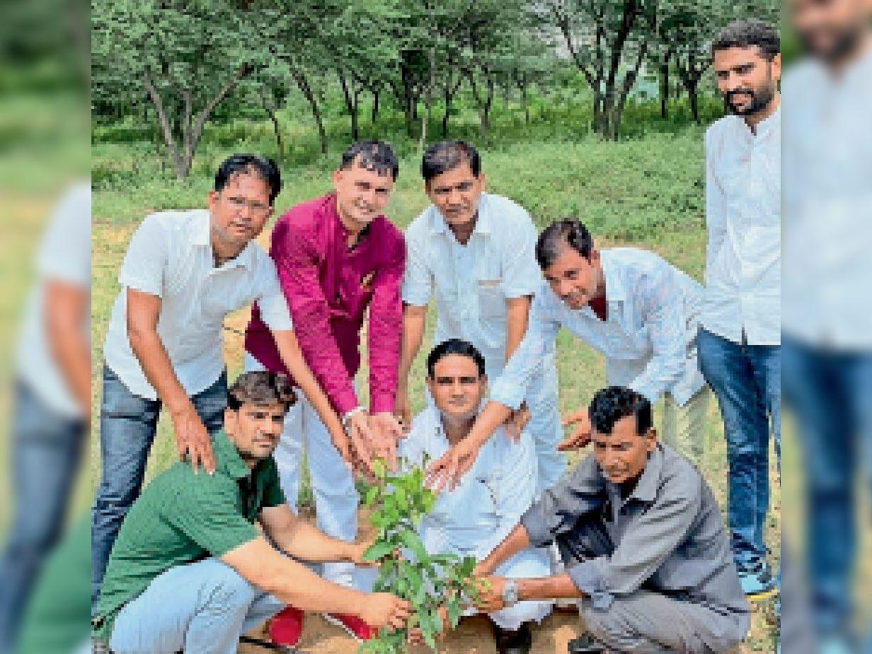 पूर्व उपमुख्यमंत्री पायलट के जन्मदिन को लेकर पौधे लगाए - Dainik Bhaskar