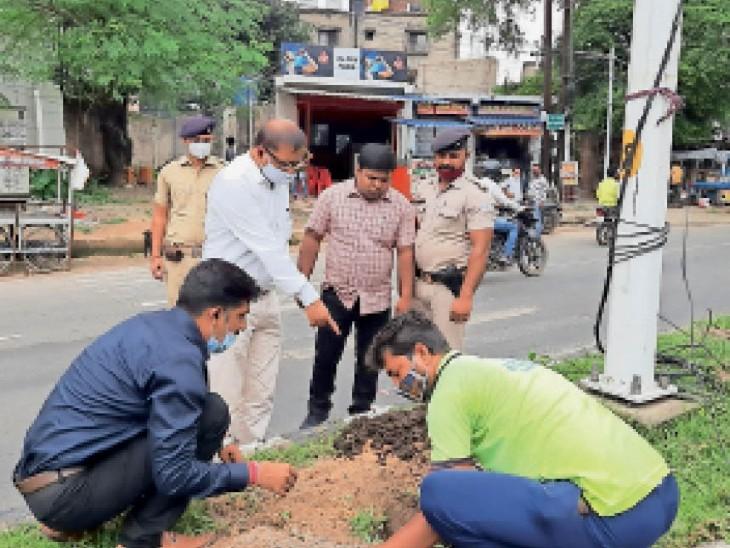सड़कों के डिवाइडर पर पौधरोपण करते निगमकर्मी। - Dainik Bhaskar