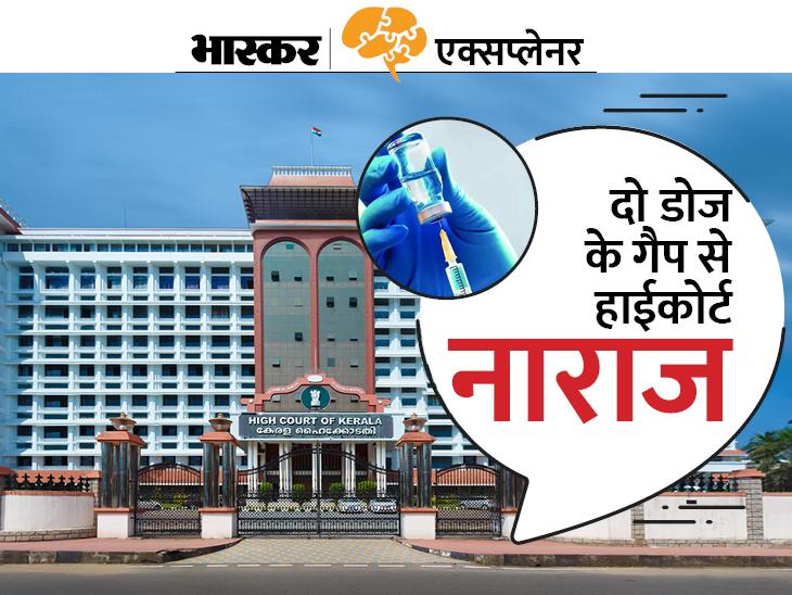 जानिए केरल हाईकोर्ट ने केंद्र सरकार से क्यों कहा कोवीशील्ड के दो डोज का गैप घटाने को; क्या हो जाएगा इससे?|एक्सप्लेनर,Explainer - Dainik Bhaskar