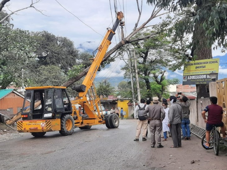 पॉपुलर का पेड़ तारों में अटका, बिजली बोर्ड की टीम ने मशीन लगाकर हटाया तो हुआ आवागमन सुचारू हिमाचल,Himachal - Dainik Bhaskar