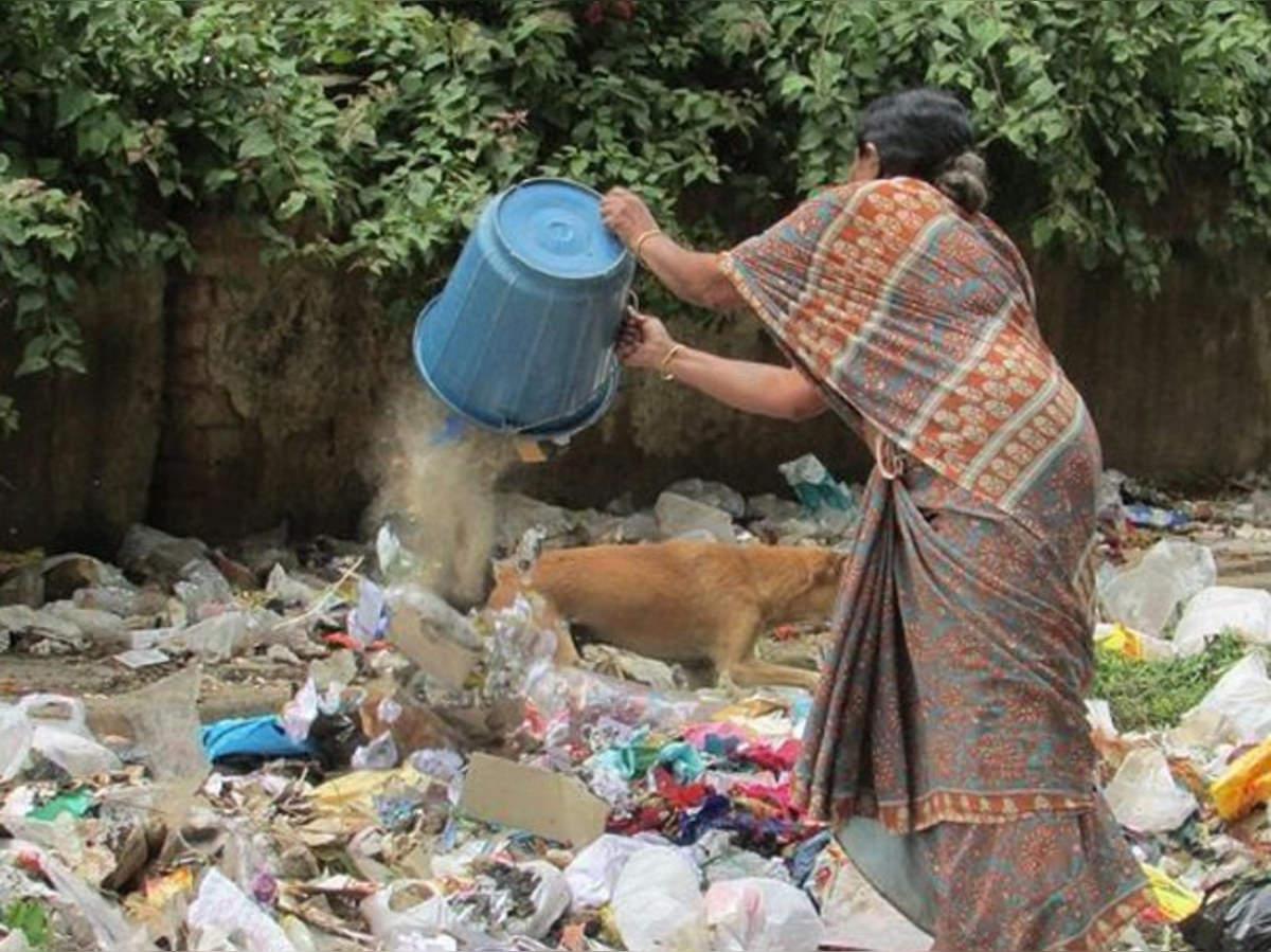 30 वार्ड में 778 लोग चिन्हित किए गए जो सड़कों पर फेंकते हैं कूड़ा, नगर निगम की टीम अब घर जाकर वसूलेगी जुर्माना|कानपुर,Kanpur - Dainik Bhaskar