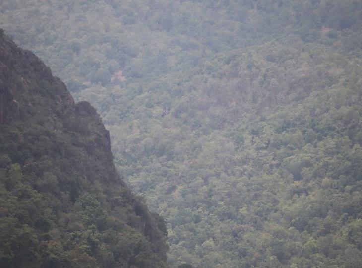 यह इलाका पूरी तरह से बीहड़ है। जिस जगह गणपति बप्पा विराजमान हैं उसे बोल चाल की भाषा में वीरान गांव कहा जाता है।