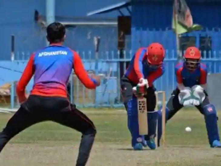 CEO हामिद शिवनारी बोले- हमें अलग- थलग न करें और राजनीति को क्रिकेट से दूर रखें ; CA ने नवंबर में अफगानिस्तान से टेस्ट कैंसिल करने की चेतावनी दी थी|क्रिकेट,Cricket - Dainik Bhaskar