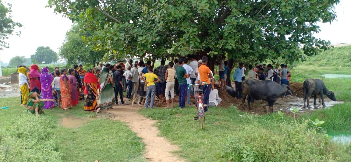 आकाशीय बिजली गिरने से दो गांव में किसानों के चार पशुओं की मौत, मुआवजे की उठी मांग|आगरा,Agra - Dainik Bhaskar