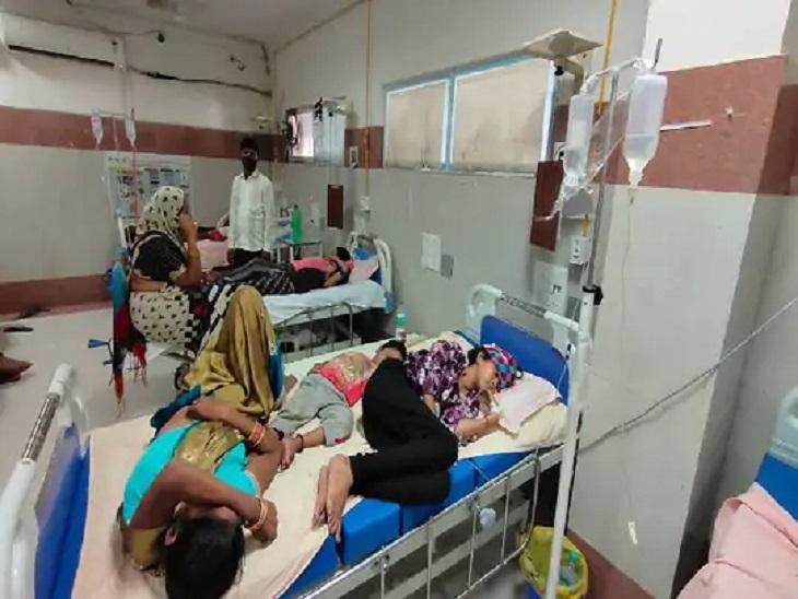 प्रदेश में 24 घंटे में डेंगू के 263 नए मरीज मिले; इनमें सबसे ज्यादा 170 फिरोजाबाद में, यहां 5 मरीजों ने दम तोड़ा|लखनऊ,Lucknow - Dainik Bhaskar