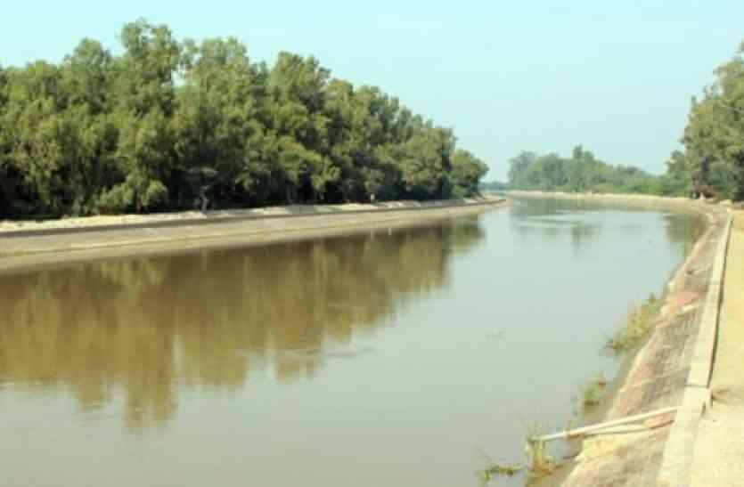 इंदिरा गांधी नहर की 236 आरडी पर मिले थे कार, मोबाइल, आधार कार्ड और जहर की पुड़िया श्रीगंंगानगर,Sriganganagar - Dainik Bhaskar