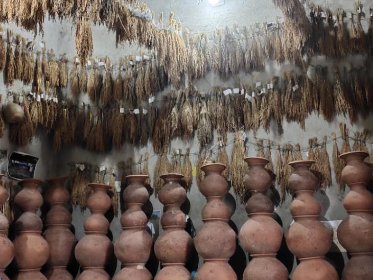 बीजों को बचाने का यह देसी तरीका है। इसमें मिट्टी के मटके में गोबर और हल्दी का लेप करके बीज को संरक्षित किया जाता है।