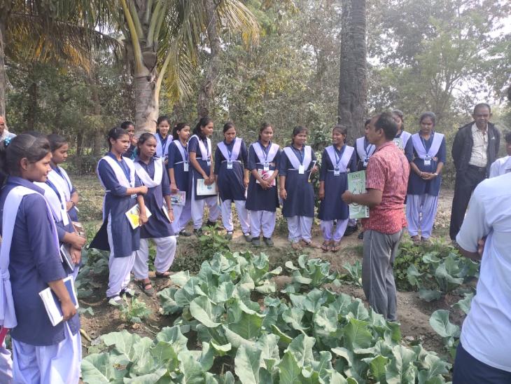 बीज बैंक को लेकर सुदामा ने एक किताब भी लिखी है, जो ओडिशा के कई स्कूलों में पढ़ाई जाती है। वे खुद भी बच्चों को खेती की ट्रेनिंग देते हैं।