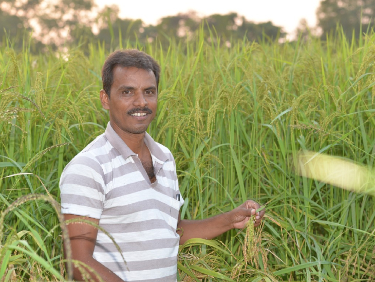 सुदामा कहते हैं कि खेती से मेरा गहरा लगाव रहा है। मैंने अपने दादा जी से खेती और बीजों को सहेजने की ट्रेनिंग ली है।
