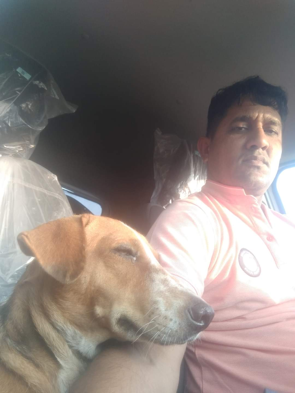 SHO का तबादला हुआ तो खाना-पीना छोड़ दिया; मरणासन्न अवस्था में पहुंचा, 5वें दिन इंस्पेक्टर लेने आया और उपचार कराया हिसार,Hisar - Dainik Bhaskar