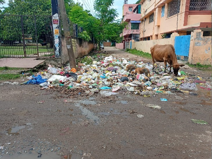 RJD ने कहा- मुख्यमंत्री की नाक लोहे की; JDU का पलटवार- RJD तो रोजगार के नाम पर राजनीतिक बदबू फैलाता रहा बिहार,Bihar - Dainik Bhaskar