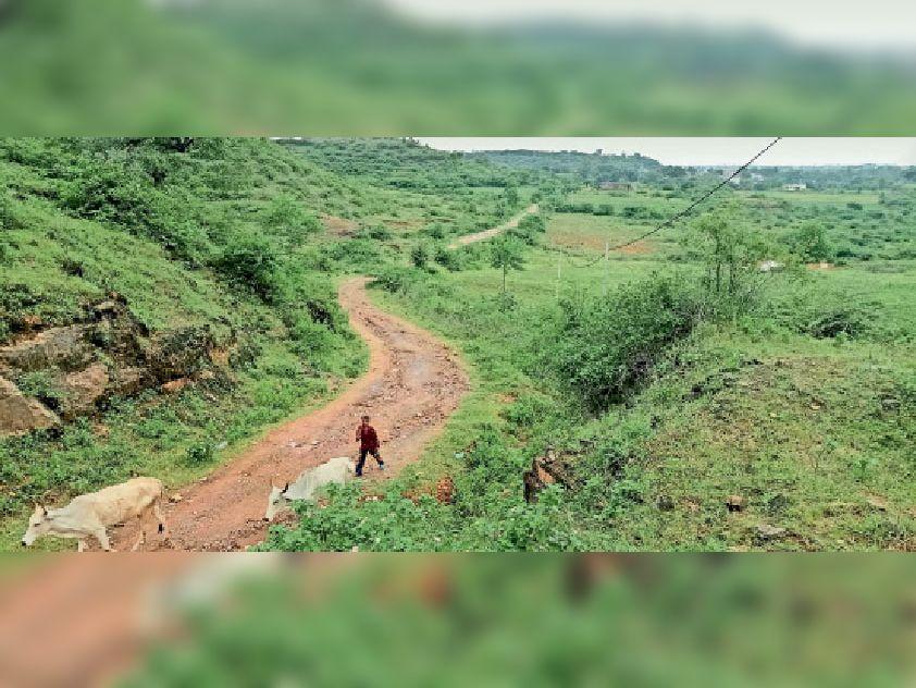 बाग. इस तरह से उबड़-खाबड़ सड़क से हाेकर पहुंचते हैं श्रद्धालु और ग्रामीण। - Dainik Bhaskar