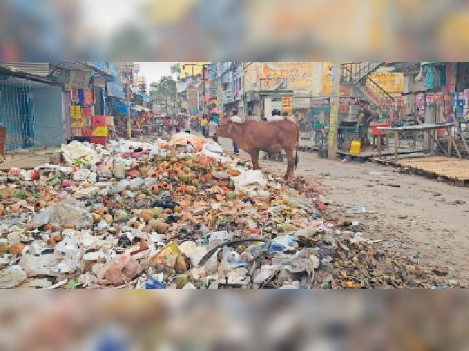 कूड़े का उठाव नहीं होने से भरावरपर चौराहा के समीप लगा कचरे का ढेर। - Dainik Bhaskar