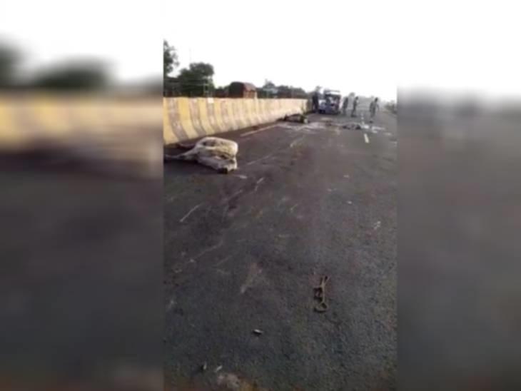 तेज रफ्तार ट्रक ने 6 गायों को मारी टक्कर, अंधेरे का फायदा उठाकर फरार हुआ ड्राइवर|राजगढ़ (भोपाल),Rajgarh (Bhopal) - Dainik Bhaskar