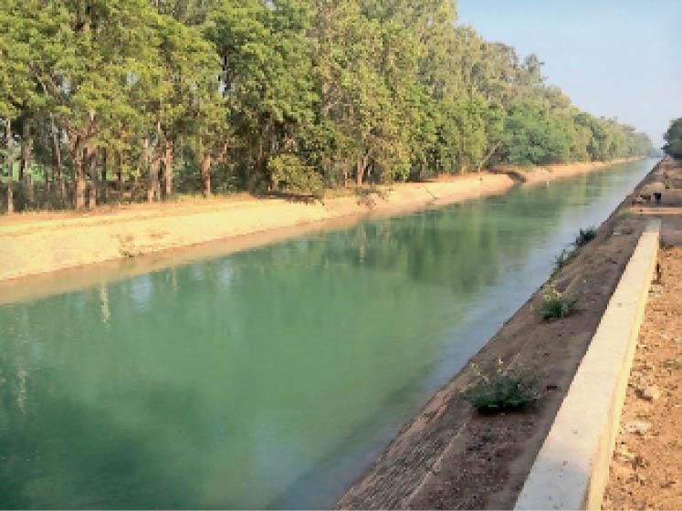 रतिया. गांव रोजावली में भाखड़ा नहर जहा से शहर को नहरी पानी मिलेगा। - Dainik Bhaskar