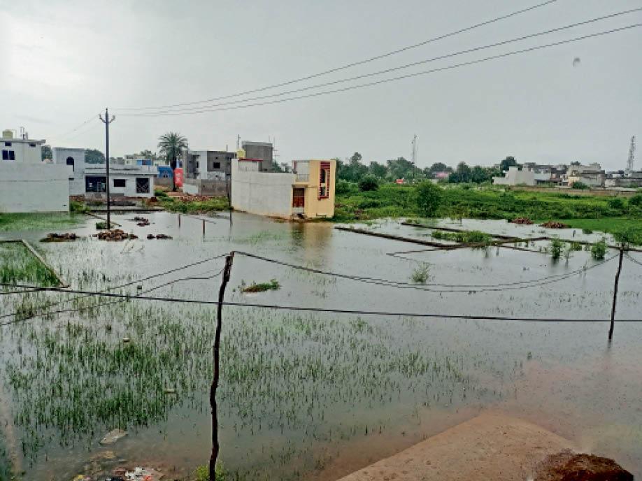 क्षेत्र में 10 घंटे तक लगातार बारिश के कारण रविवार को सुबह 10.40 बजे रेलवे स्टेशन कॉलोनी गणपति नगर में जलभराव की स्थिति रही। - Dainik Bhaskar