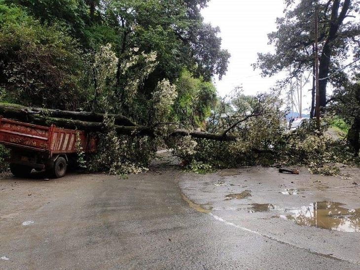 संजौली कॉलेज के पास पेड़ गिरने से बंद हुआ रोड और चपेट में आया टिप्पर।