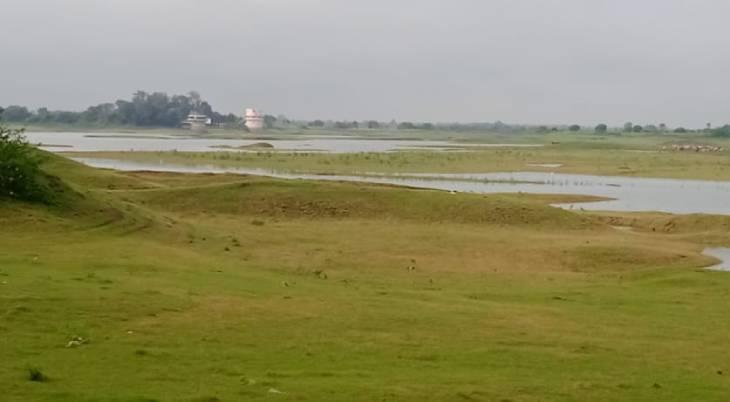 गंभीर बांध का कैचमेंट एरिया। यहां भी अभी तक पानी नहीं आया है। - Dainik Bhaskar