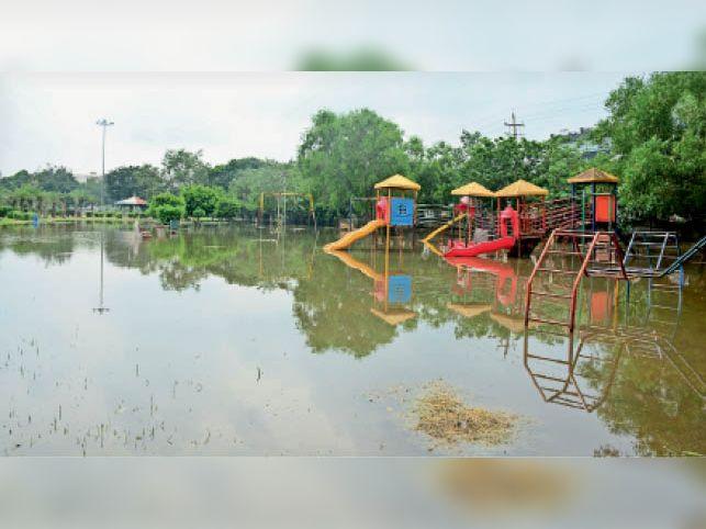 सेक्टर-1 स्थित ताऊ देवीलाल पार्क में भरा बरसात का पानी। - Dainik Bhaskar