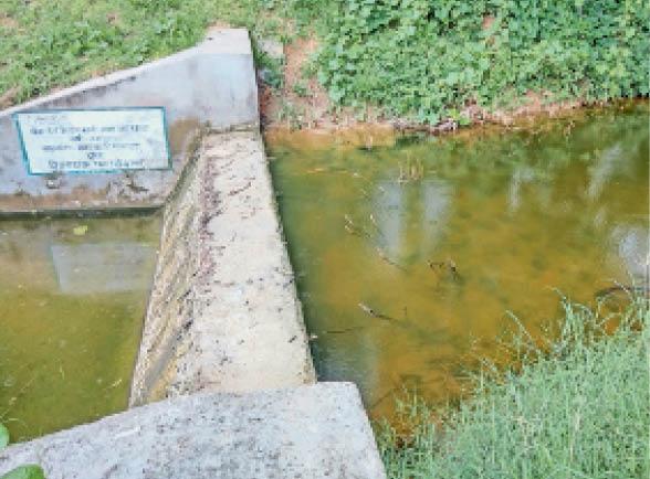 नैनवां. मानपुरा गांव में माना का घाटा बड़ा खाल पर बनाया गया एनीकट। - Dainik Bhaskar