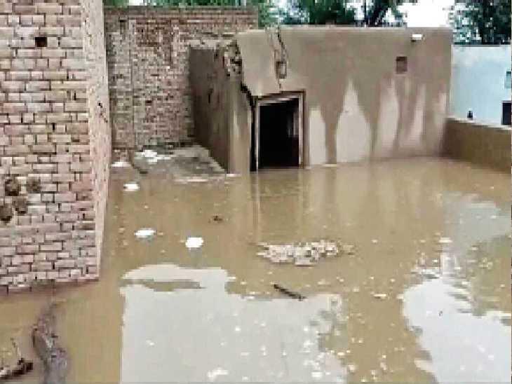 आबादी की तरफ पानी का बहाव, 60 से ज्यादा लोगों ने छोड़ा घर, 300 एकड़ से ज्यादा फसल डूबी|फाजिल्का,Fazilka - Dainik Bhaskar