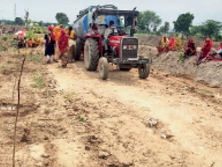 बिराटिया कलां ग्राम पंचायत में सरकारी भूमि पर पौधारोपण कर पानी पिलाते हुए। - Dainik Bhaskar