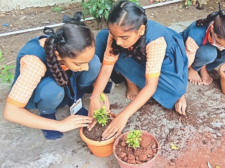 छात्राएं अपने जन्मदिन पर सब्जी का पौधा लगाकर उसकी देखभाल करती हैं। - Dainik Bhaskar