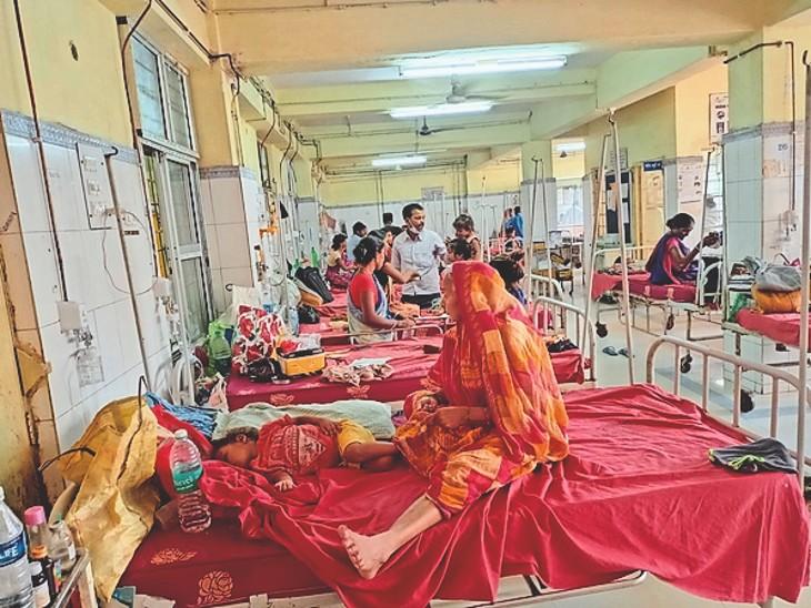 मायागंज अस्पताल के शिशु इंडोर वार्ड में भर्ती बच्चे। - Dainik Bhaskar