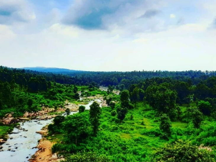 बंगाल की खाड़ी में लो प्रेशर बनने से फिर से सक्रिय हुआ मानसून, 16 तक राज्य के हर हिस्से में बारिश के आसार|रांची,Ranchi - Dainik Bhaskar