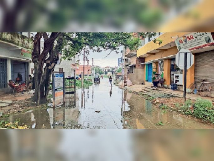 हकाम गांव जानें वाली मुख्य सड़क पर नाली का जमा पानी। इसी रास्ते से आते-जाते हैं लोग। - Dainik Bhaskar