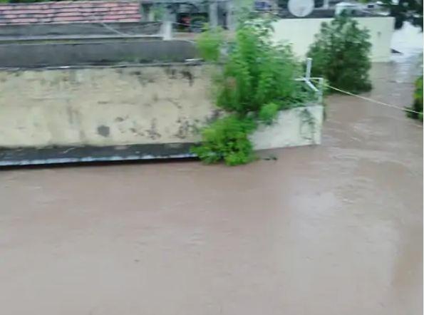 जूनागढ़ की विसावदर तालुका में 364 मिमी और जामनगर के कलावाड़ में 348 मिमी बारिश दर्ज की गई।