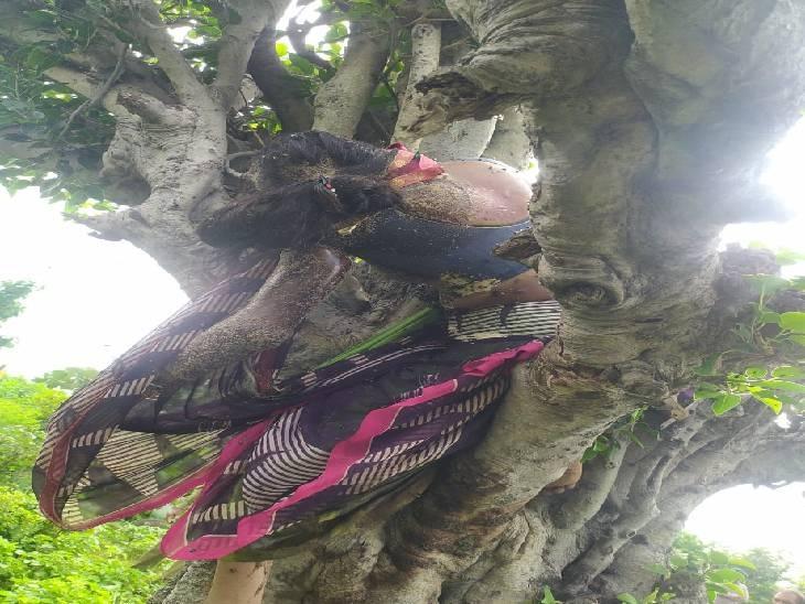 7 साल की बेटी बोली - दो दिन पहले मां पेड़ के पास खड़ी थी, मैंने पूछा तो कहा - भाई का ध्यान रखना मैं जा रही हूं|धार,Dhar - Dainik Bhaskar