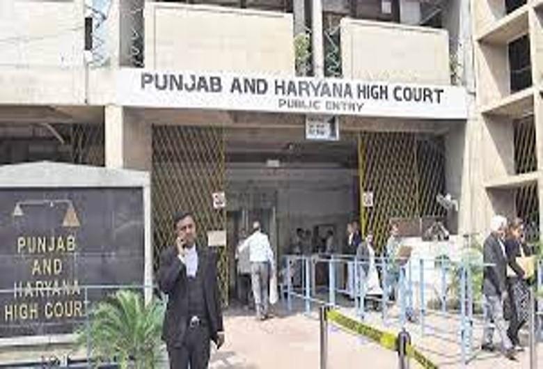 11 अक्टूबर के लिए टली हाईकोर्ट की सुनवाई; सरकार नई नीति फॉलो करना चाहती है, अदालत की पुराने नियमों पर चलने की सलाह|करनाल,Karnal - Dainik Bhaskar