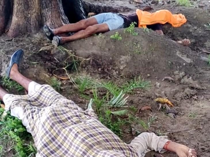 झांसी में आकाशीय बिजली का कहर दो किसानों की मौत और आधा दर्जन बकरियों की भी गई जान; जानिए कैसे बचें बिजली से|झांसी,Jhansi - Dainik Bhaskar