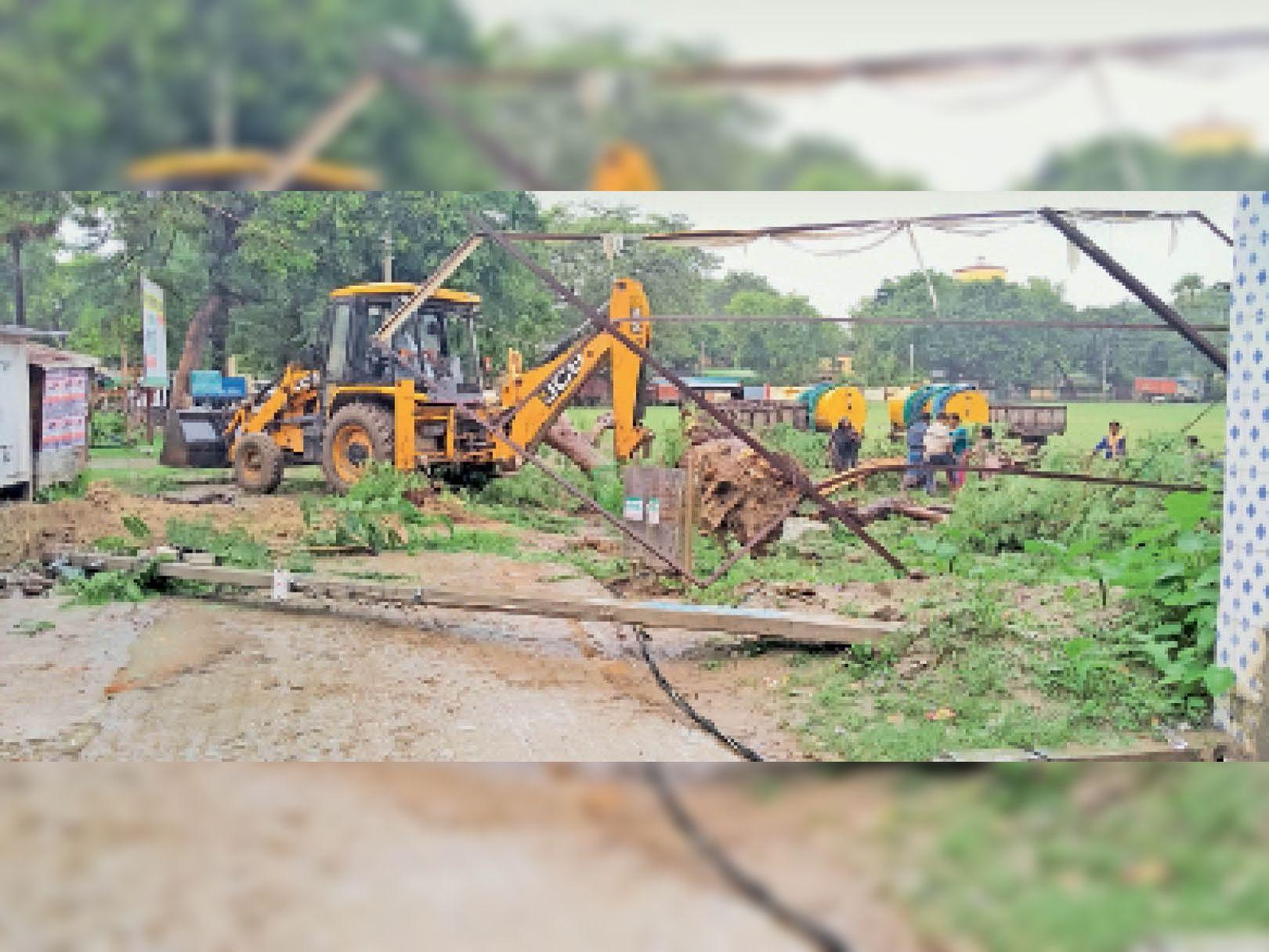 तेज हवा व बारिश के कारण पेड़ विद्युत तार पर गिरने से मची अफरा-तफरी। - Dainik Bhaskar