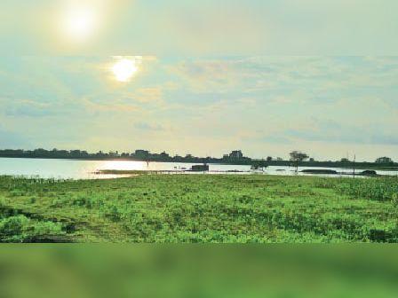 दसाई. इस तरह से खाली रह गया बामनखेड़ी का तालाब। - Dainik Bhaskar